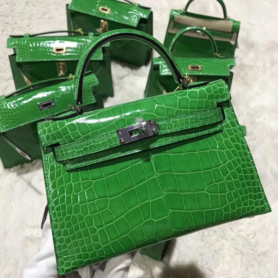 715dc73906de Picture of Hermes MiniKelly Crocodile leather Tote Bag Grass Green Silver