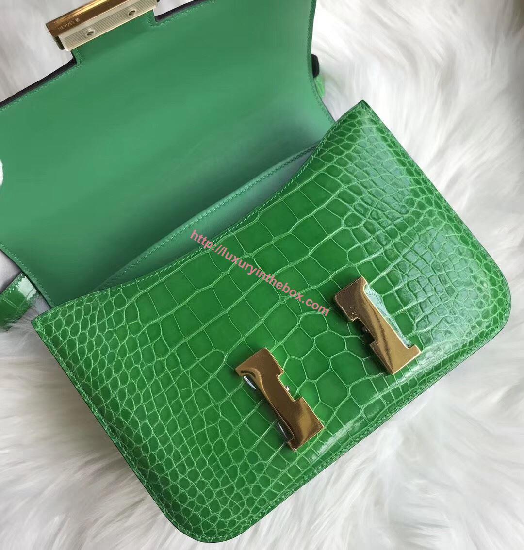 Picture of Hermes Constance 18cm Shoulder Bag Cactus Gold